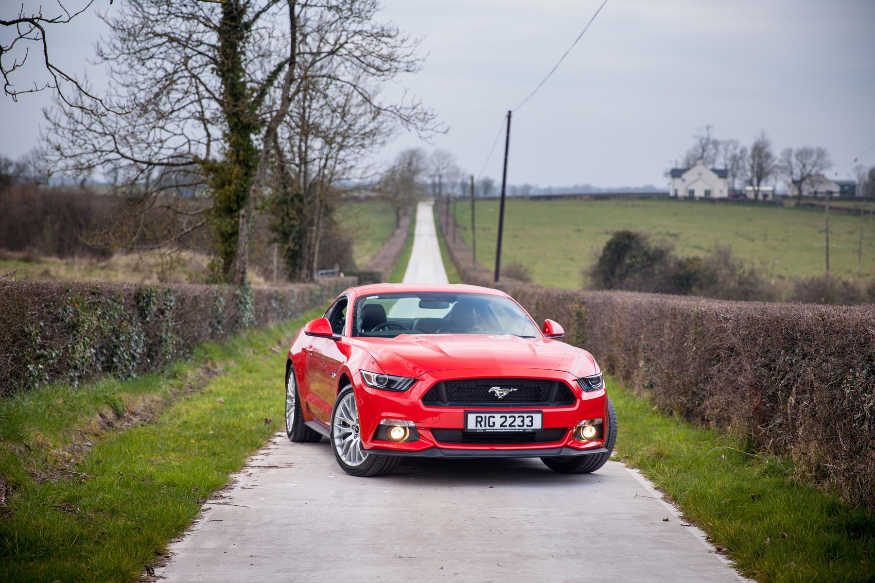 In the middle of 1964 Ford Motor Company in America launched the Ford Mustang a four seater coupé that offered style iniduality and muscle under the ... & FORD UNLEASH A BEAST IN RIGHT HAND DRIVE | Used Cars NI Blog markmcfarlin.com